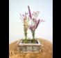 rekje-met-twee-vaasjes-droogbloemen