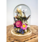 Droogbloemen in glazen stolp ''klein'' - ⌀13xH12cm