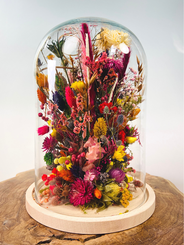Droogbloemen in glazen stolp ''large'' - ⌀22xH30cm