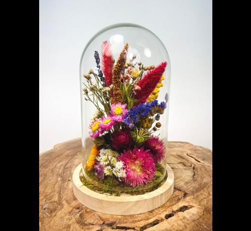 Droogbloemen in glazen stolp ''medium'' - ⌀14xH21cm