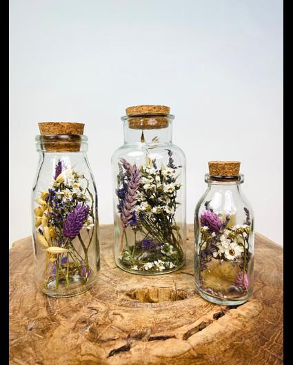Droogbloemen in glazen potten set
