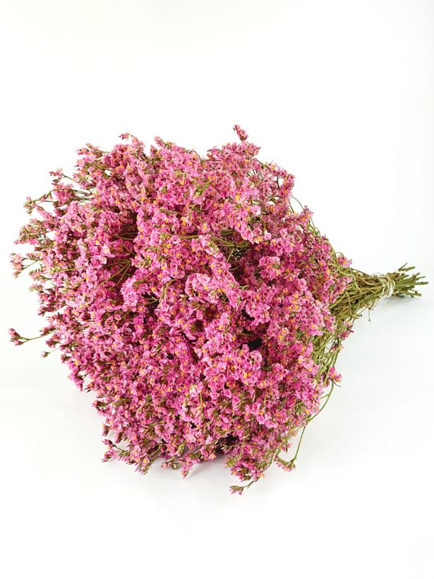 Limonium 'Diamond roze'