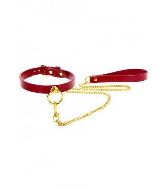 Taboom O-Ring Collar and Chain Leash