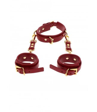 Taboom D-Ring Collar and Wrist Cuffs