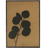 Zusss Schilderij - eucalyptus