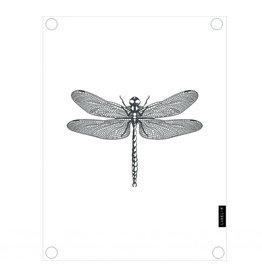 Tuinposter libelle wit - 60x80cm