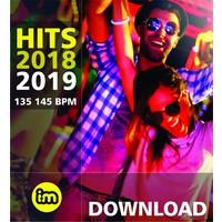 HITS 2018-2019 MP3