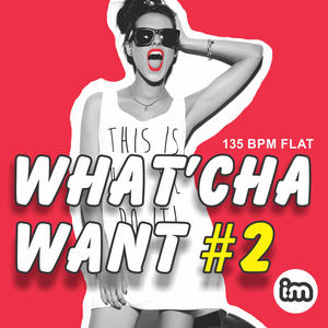 Interactive Music #08 WHAT'CHA WANT vol 2 - CD