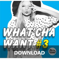 WHAT'CHA WANT vol 3 - mp3