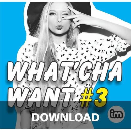 Interactive Music WHAT'CHA WANT vol 3 - mp3