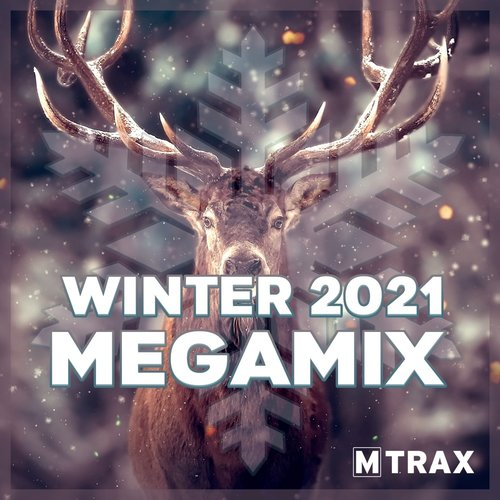 multitrax Winter 2021 Megamix  - CD