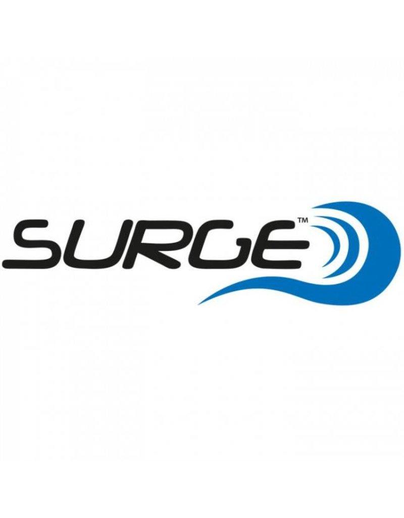 The Surge THE SURGE