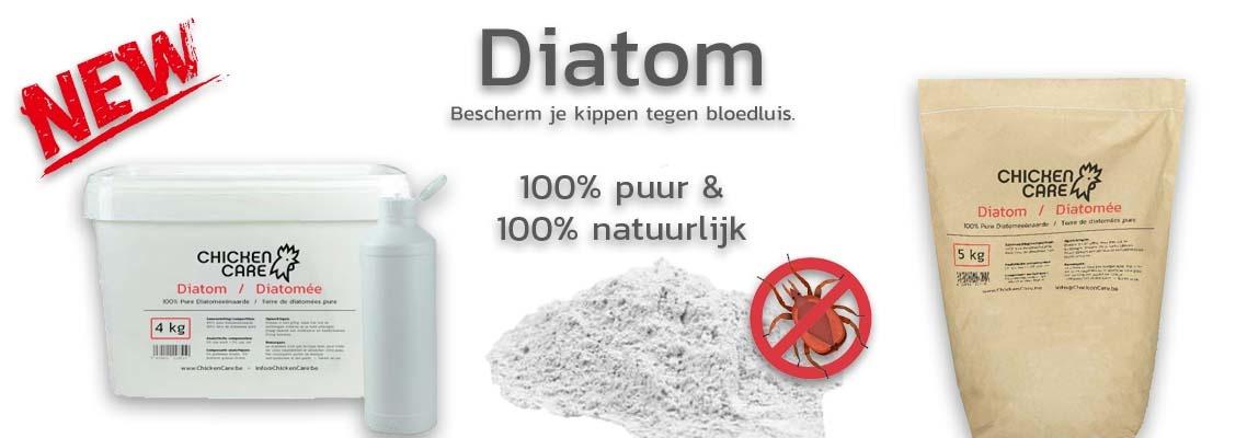Diatom NEW