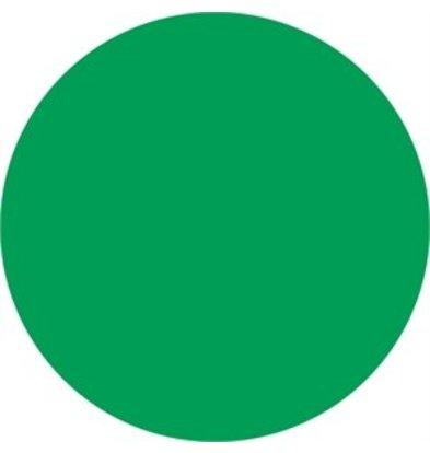 XXLselect Vogue kältebeständige Etiketten grün 19mm