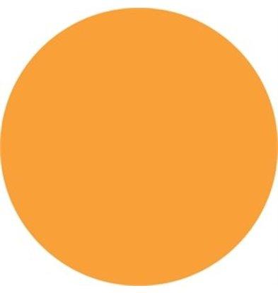 XXLselect Vogue kältebeständige Etiketten orange 19mm