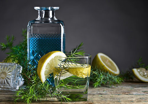 Freitag, 30. Juli -   Gin Tasting