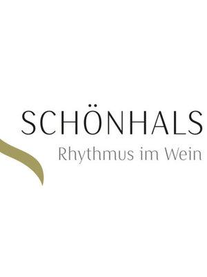 Weingut Schönhals Schönhals Samt & Seide Dornfelder 2018