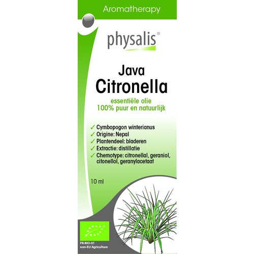 Physalis Citronella