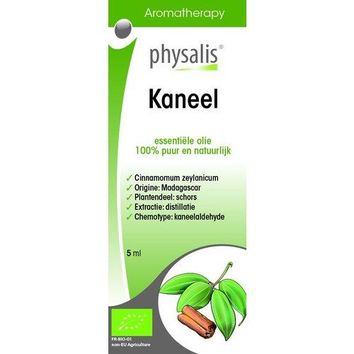 Physalis Physalis Kaneel