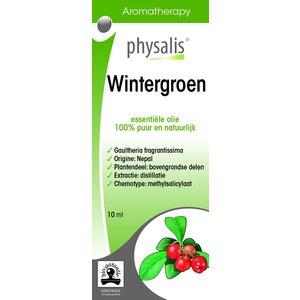 Physalis Physalis Wintergroen