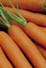 Diverse wortelgewassen Amsterdamse Bak 2 - Amfine
