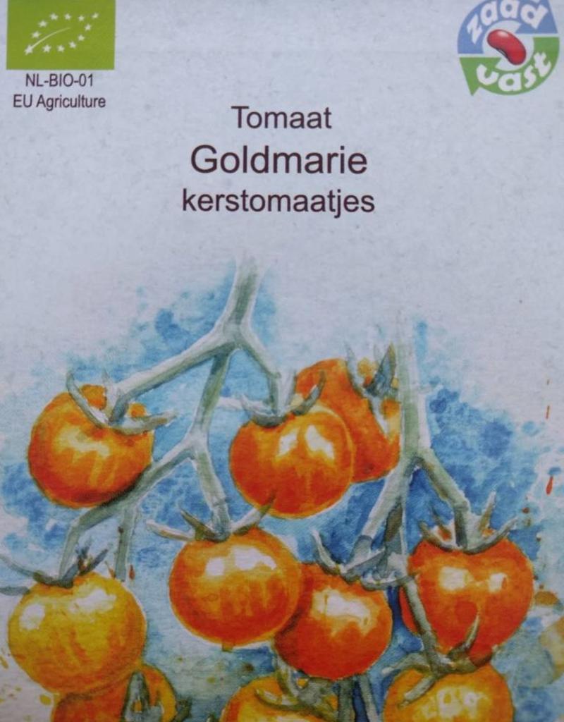 Tomaat Goldmarie (Goldiana) -  in zakje aquarel