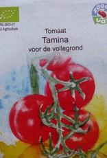 Tomaat Tamina -   in zakje aquarel