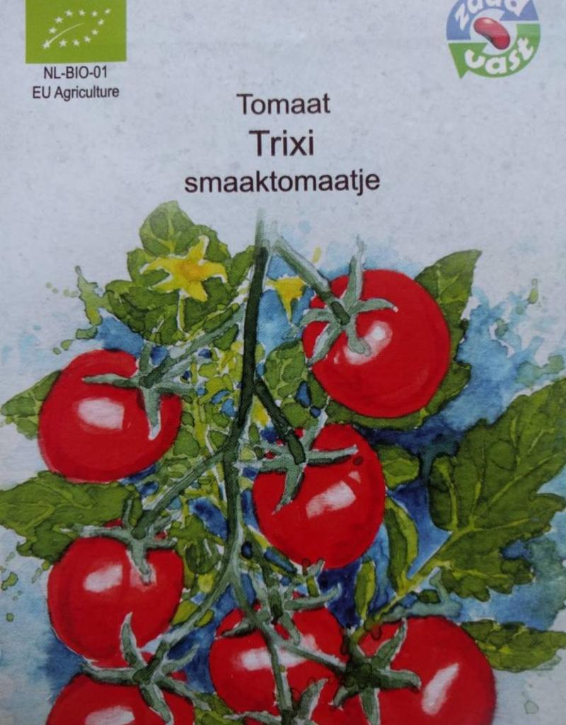 Tomaat Trixi -  in zakje aquarel