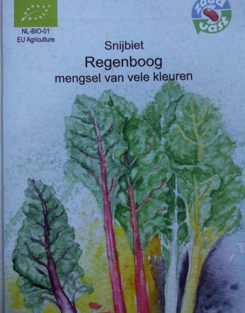 Snijbiet Regenboog - in zakje aquarel