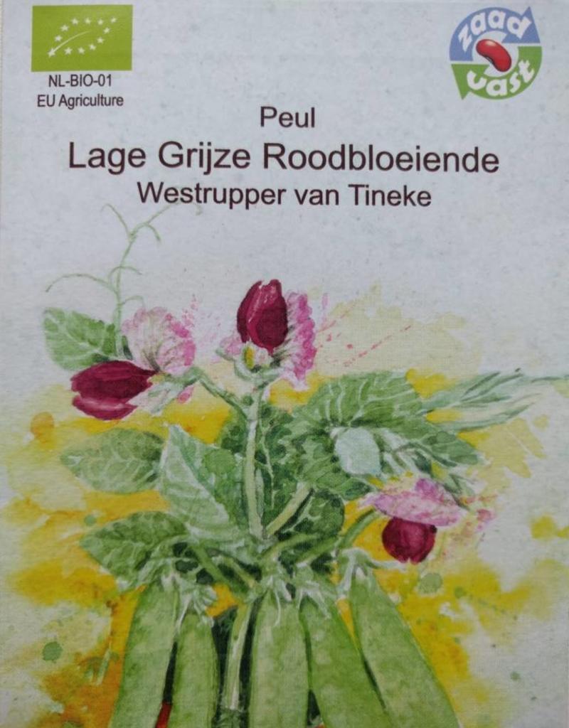 Peul Westrupper peul -  in zakje aquarel