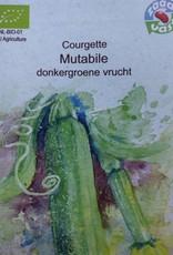 Courgette Mutabile -  in zakje aquarel