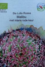 Sla Lollo Rossa Malibu -   in zakje aquarel