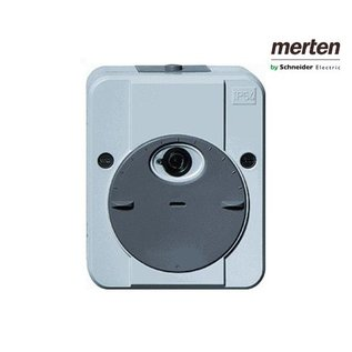 Merten Schneider Electric Merten ARGUS schemerschakelaar MTN544894