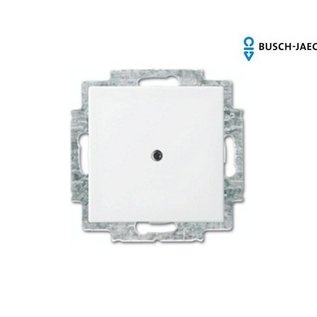 Busch-Jaeger Blindplaat balance