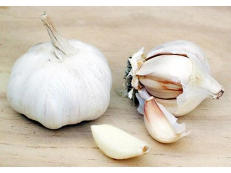 Siciliaanse kruiden voor visgerechten: met munt en oregano