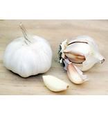 Kruiden mengsel gemaakt in Sicilië voor marinades en vleesgerechten