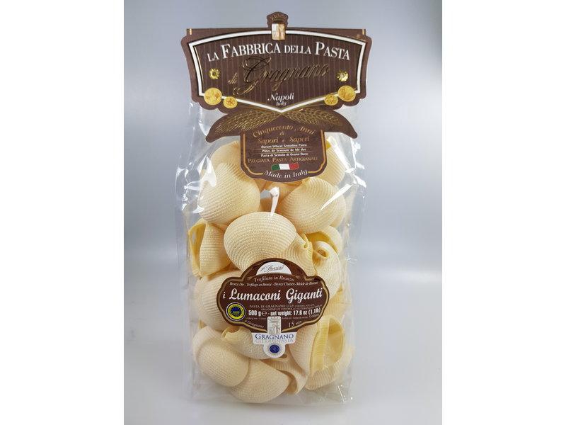 Pasta di Gragnano Lumaconi Giganti Pastaschelpen groot