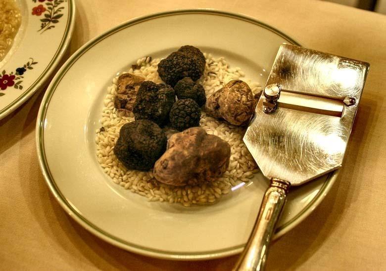 Witte truffel, zwarte truffel   Wat is het verschil
