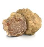 Truffelolie uit Umbrië met stukjes witte truffel