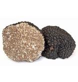 Tartufi Jimmy Truffelhoning met stukjes truffel, 120 gram