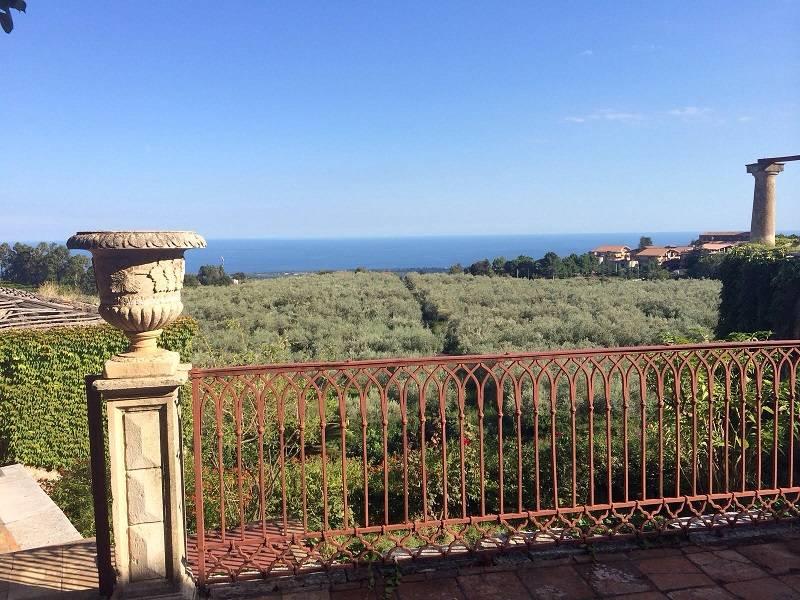 Van oogst tot olijfolie