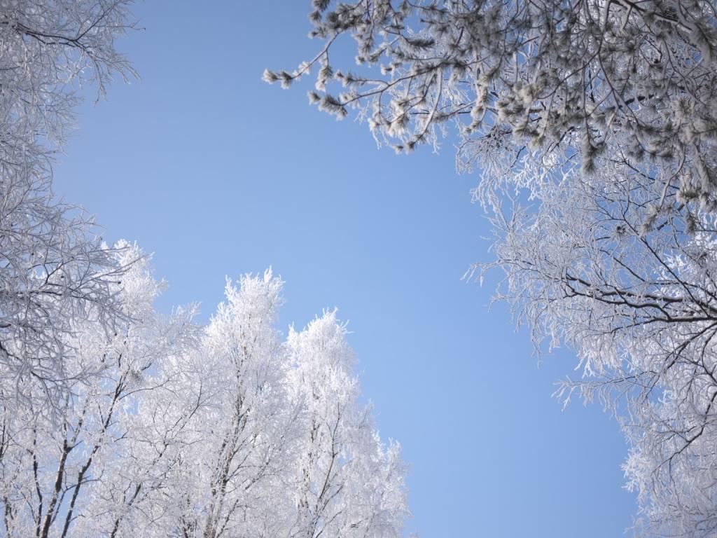 Buiten zitten in de winter? Zo kan het!