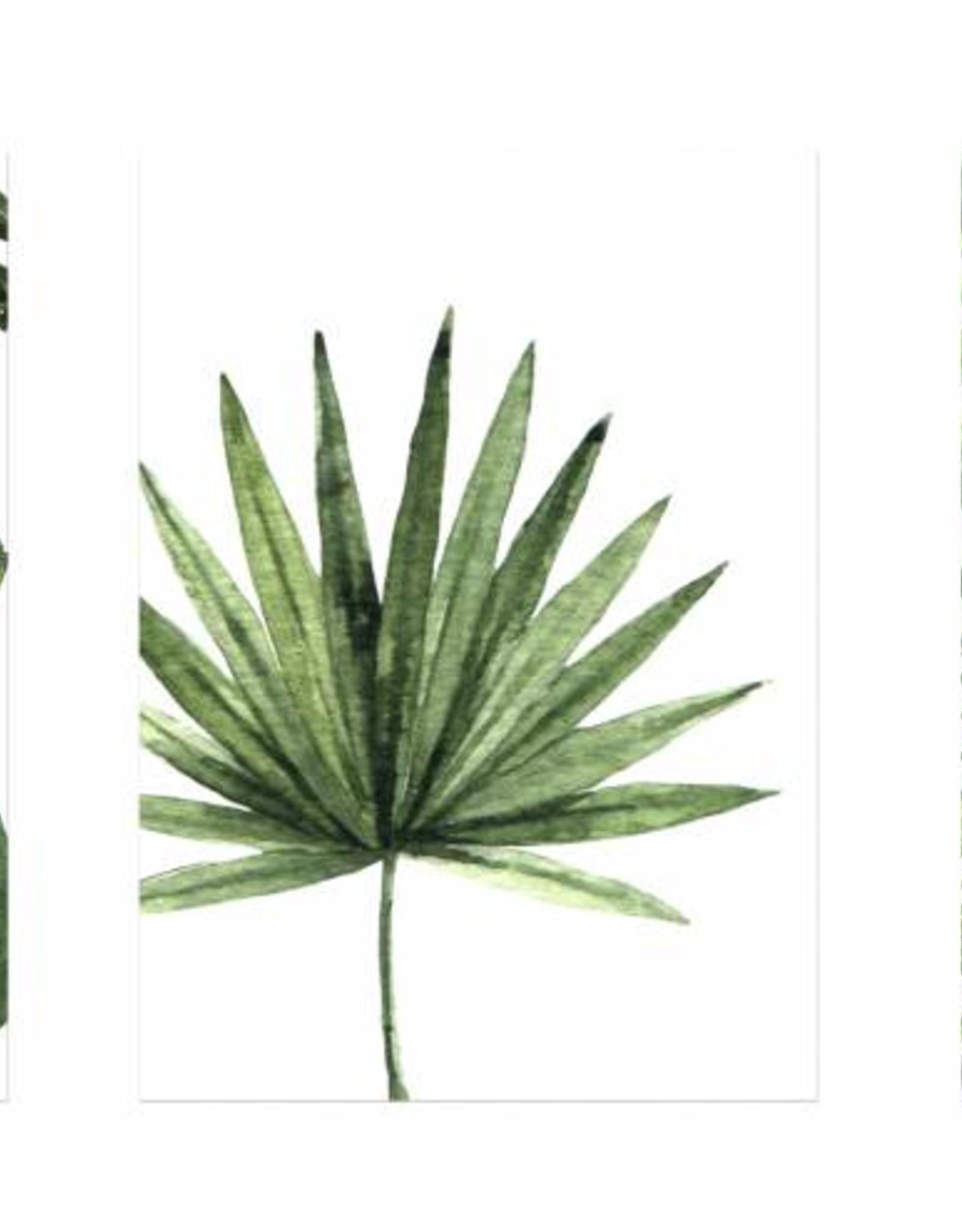 """Wandbilder 3er Set """"Dschungel"""" DIN A4"""