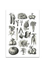 Poster Gemüse Vintage
