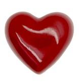 Godert.Me Godert.me 3D heart pin rood