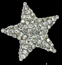 Godert.Me Godert.me Rhinestone star pin silver