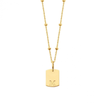 Just Franky Just Franky Mini Tag Necklace bolletjes 50cm goud