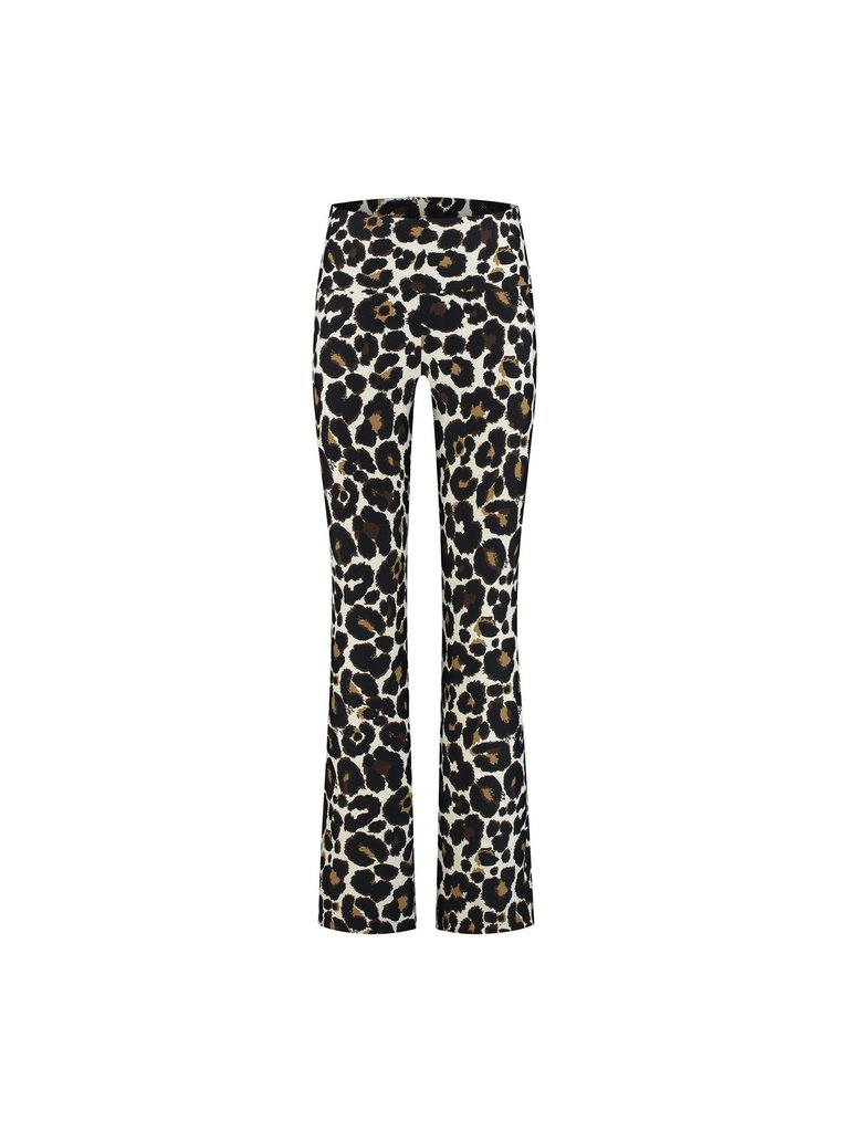 deblon sports Deblon Sports cropped flared sports leggings leopard
