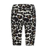 deblon sports Deblon Sports Classic Shorts Leopard