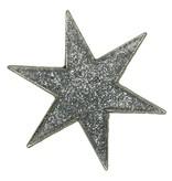 Godert.Me Godert.me Star pin glitter zilver
